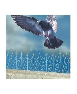 Anti-aves con base de policarbonato - 25 mt. ( 50 tiras de 50 cm. )